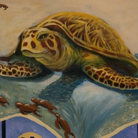 Sea turtle from Taima mural