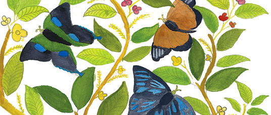 Art for Conservation program: painting of butterflies and leaves