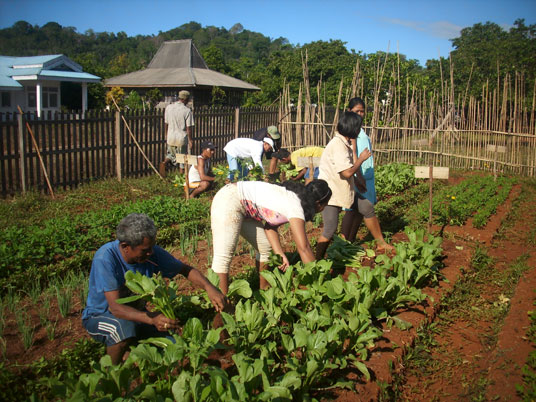 A group of Tompotikan residents work in their organic farm