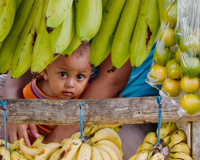 human baby peeks out from behind bananas