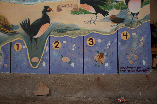 Urutan perkembangan telur burung maleo di lukisan dinding Taima