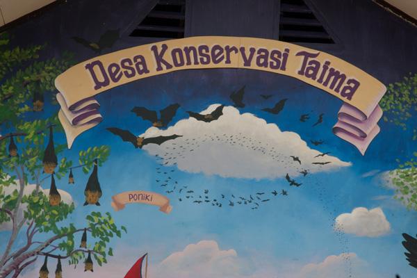 Bats and sign at Taima