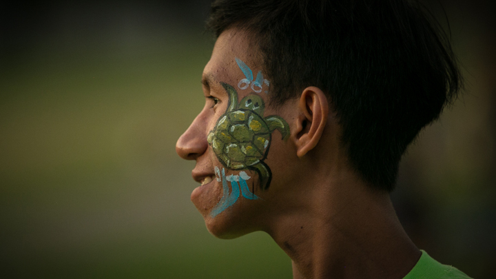 Face paint: hatchling reaches the sea